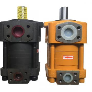 QT2323-6.3-6.3MN-S1162-A Гарячий насос продажу